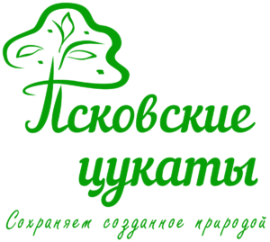 Псковские цукаты